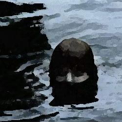 沈む男 俺怖 [洒落怖・怖い話 まとめ]
