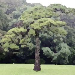 臨海学校 俺怖 [洒落怖・怖い話 まとめ]