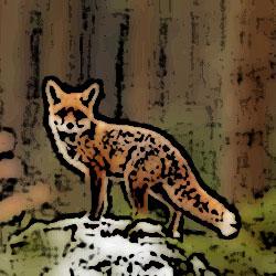 狐憑き 俺怖 [洒落怖・怖い話 まとめ]